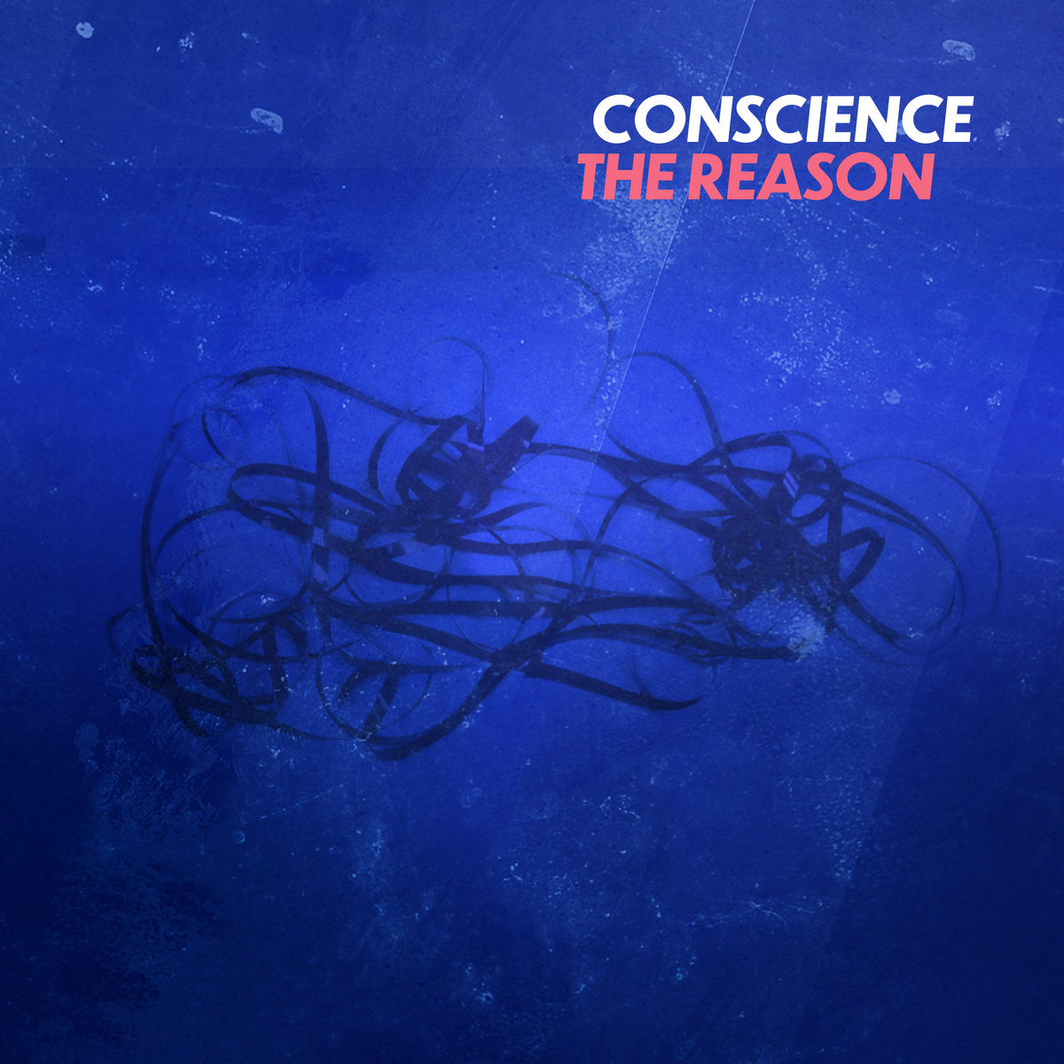 Conscience - The Reason - Conscience - The reason
