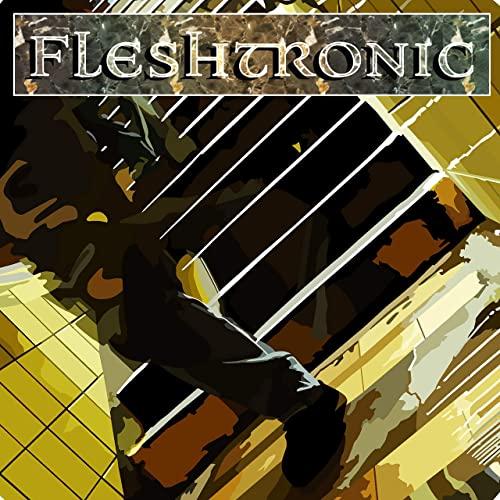 Fleshtronic - Hummingbirds - Fleshtronic - Triple a Single