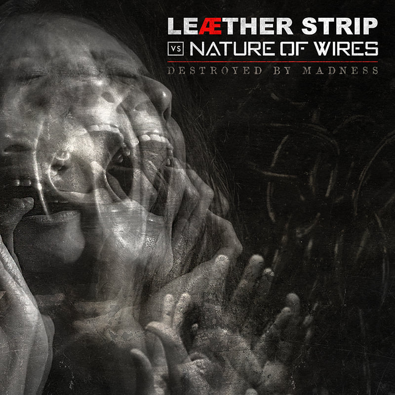 Leæther Strip vs Nature Of Wires - Destroyed By Madness - Leæther Strip vs Nature Of Wires - Destroyed By Madness